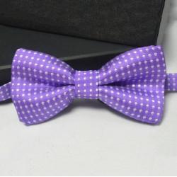 Pánský motýlek - fialový